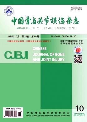 中国骨与关节损伤杂志