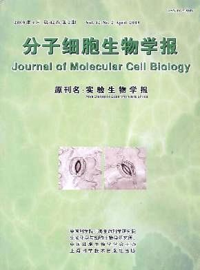 分子细胞生物学报