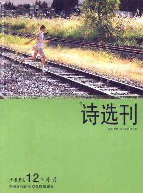 诗选刊(下半月)