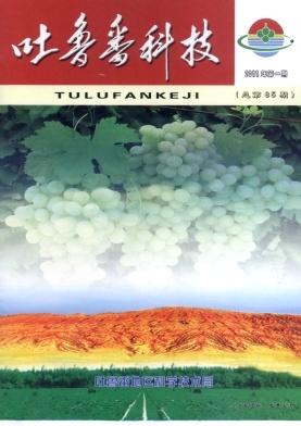吐鲁番科技