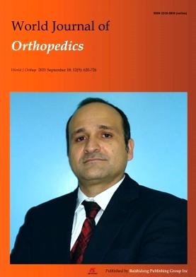 World Journal of Orthopedics
