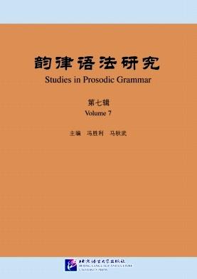 韵律语法研究