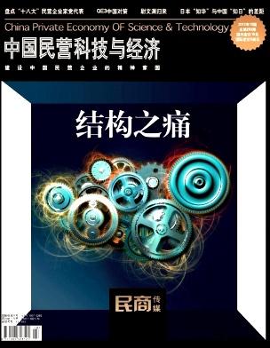 中国民营科技与经济