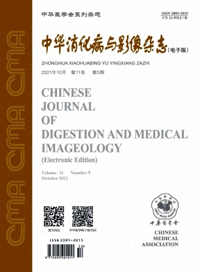 中華消化病與影像雜志(電子版)