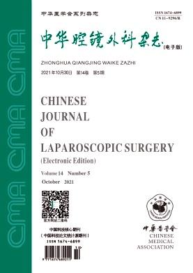 中华腔镜外科杂志(电子版)